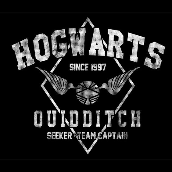 Harry Potter Book Cover Shirt : Official hogwarts quidditch team hih