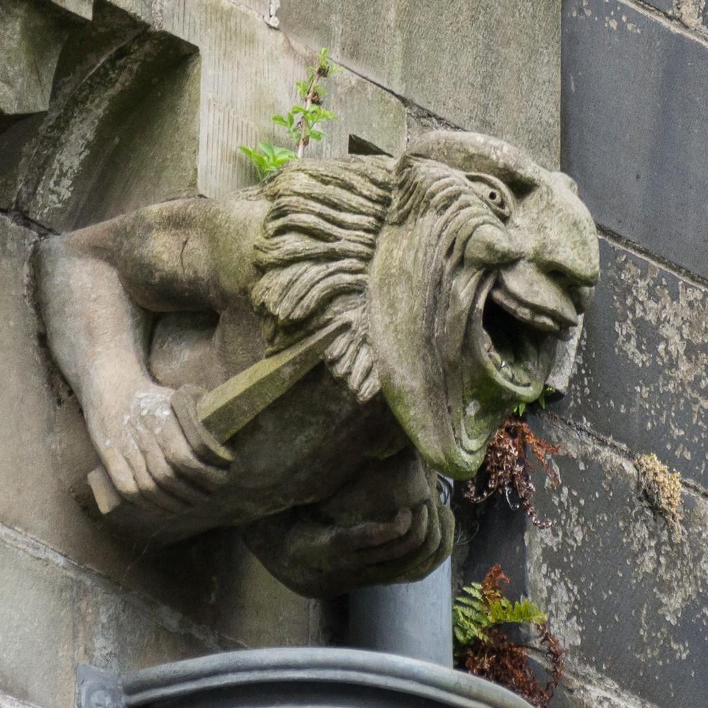 A gargoyle at Paisley Abbey