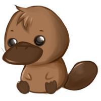 Romi the Platypus