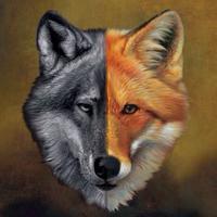 Volpina Wolf