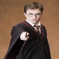 Evan Potter