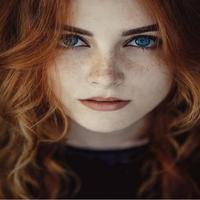 Addison Darcy