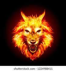 The Wolf of Apollo