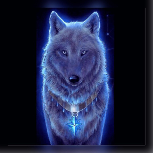 Xx sky the wolf XD