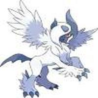 absol12344
