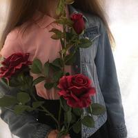 ☞ rosalina ☜