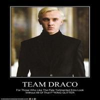 Malfoy ( And ocs)