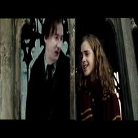 Hermione Lupin