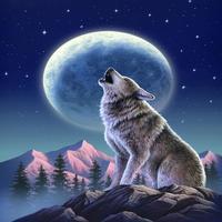 Liv Wolf